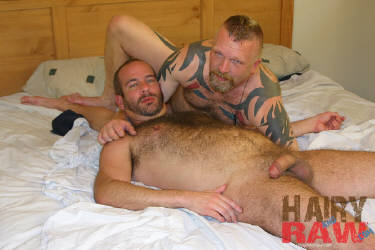 Featured gay movie: Hairy buff bears suck@